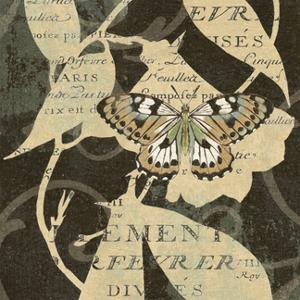 Butterfly Collage III by Suzanne Nicoll
