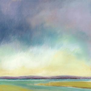 Tidal Pools III by Suzanne Nicoll