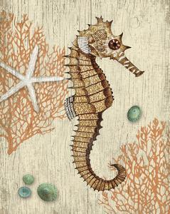Vintage Seahorse by Suzanne Nicoll