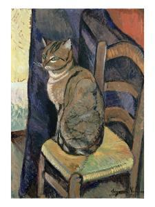 Study of a Cat, 1918 by Suzanne Valadon