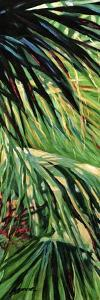 Just Fronds by Suzanne Wilkins