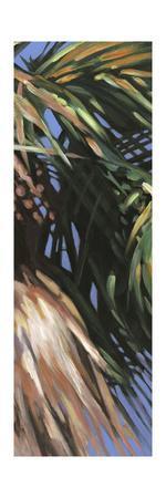 Wild Palm II