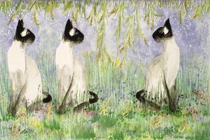 Cat Kins by Suzi Kennett