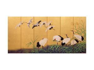 Six-Fold Screen Depicting Reeds and Cranes, Edo Period, Japanese, 19th Century by Suzuki Kiitsu