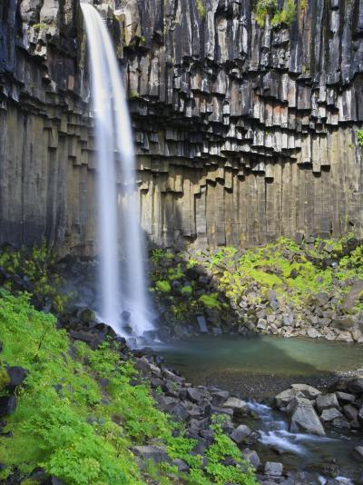 Svartifoss Waterfall, Skaftafell Park, Iceland-Michele Falzone-Photographic Print