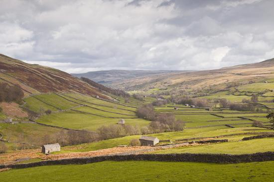 Swaledale in the Yorkshire Dales National Park, Yorkshire, England, United Kingdom, Europe-Julian Elliott-Photographic Print
