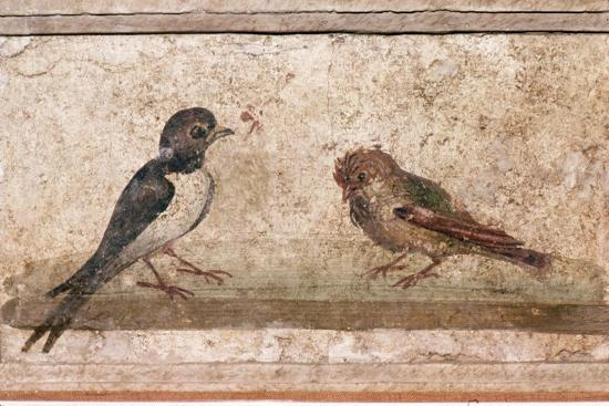Swallow and Sparrow, Roman wall painting from Boscoreale near Pompeii, 1st century-Unknown-Giclee Print