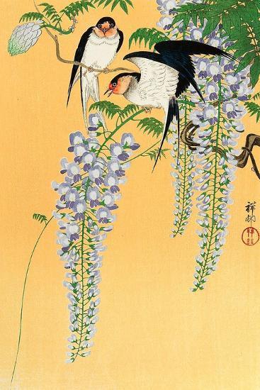 Swallows and Wisteria-Koson Ohara-Giclee Print