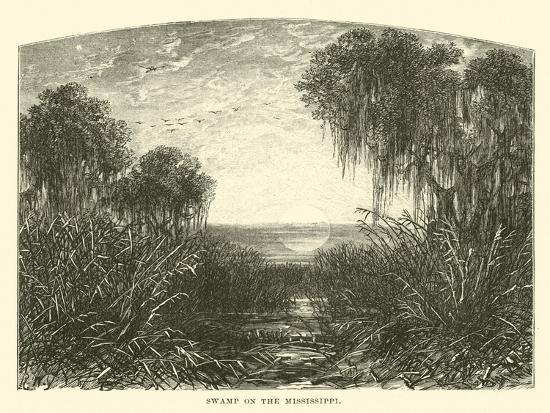 Swamp on the Mississippi--Giclee Print