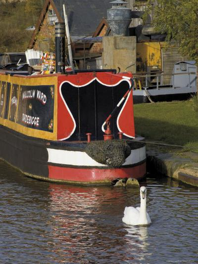 Swan and Narrowboat Near the British Waterways Board Workshops, Tardebigge, England-David Hughes-Photographic Print