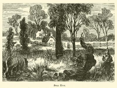 Swan River--Giclee Print