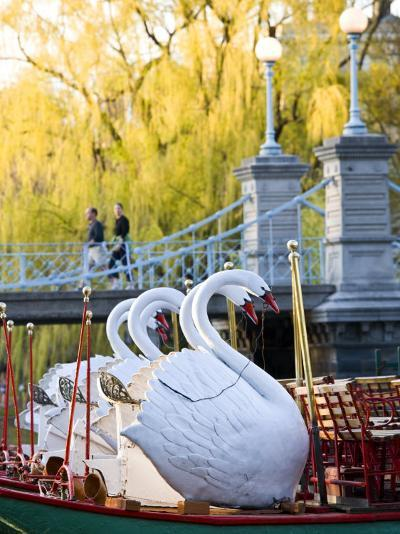 Swanboats, Public Garden, Boston, Massachusetts, USA-Walter Bibikow-Photographic Print