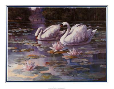 Swans and Bridge-T^ C^ Chiu-Art Print