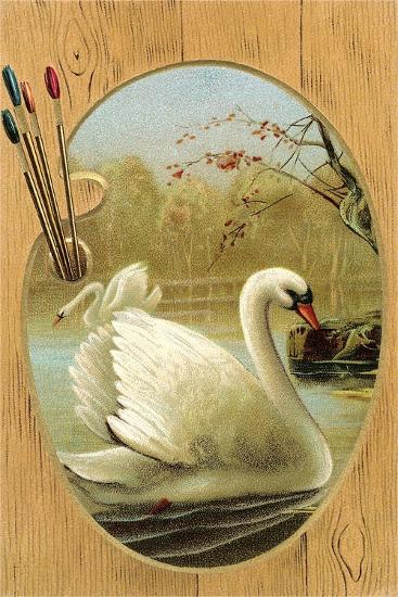 Swans on Palette--Art Print