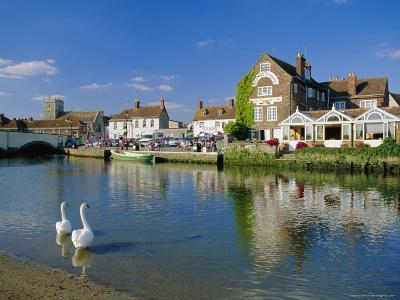Swans on the River Frome, Wareham, Dorset, England, UK-Ruth Tomlinson-Photographic Print