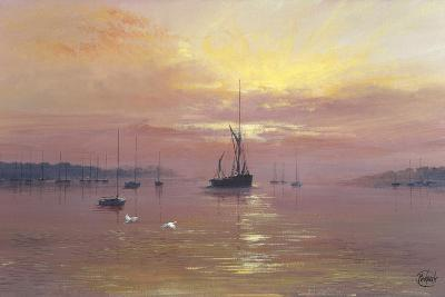 Swans Over Still Waters-Clive Madgwick-Giclee Print