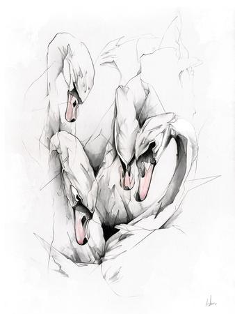 https://imgc.artprintimages.com/img/print/swans_u-l-pw4leq0.jpg?p=0