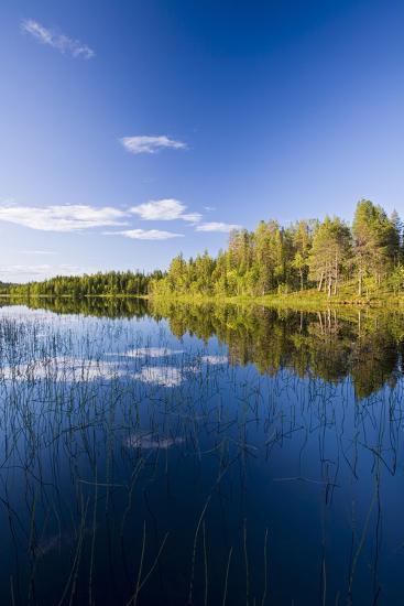 Sweden, Lapland, Lake, Shore, Landscape-Rainer Mirau-Photographic Print