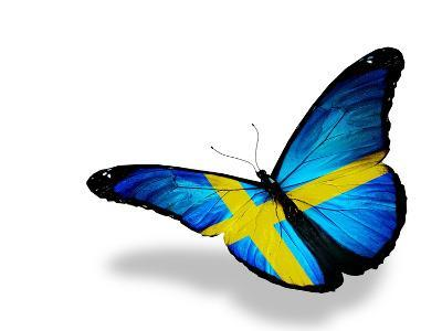 Swedish Flag Butterfly Flying, Isolated On White Background-suns_luck-Art Print