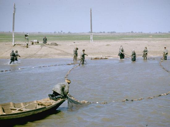 "Sweep Net Fishing for Sturgeon at ""Tanya"" in Volga River Delta Nr. Astrakhan, Russia-Carl Mydans-Photographic Print"