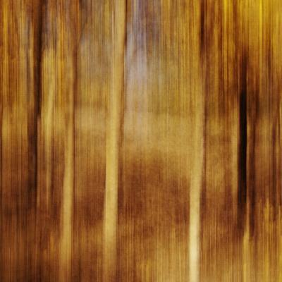 Sweeping Souls-Roberta Murray-Photographic Print
