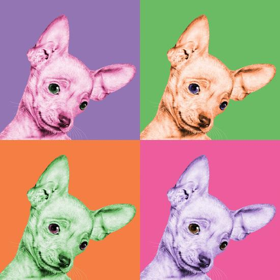 Sweet Chihuahua Pop-Jon Bertelli-Photographic Print