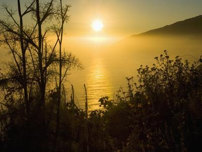 Sweet Fennel, Foeniculum Vulgare, and Sunset over Big Sur Coastline, California, Usa-Paul Colangelo-Photographic Print