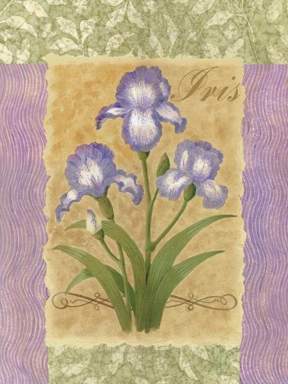 Sweet Iris-Louise Max-Art Print