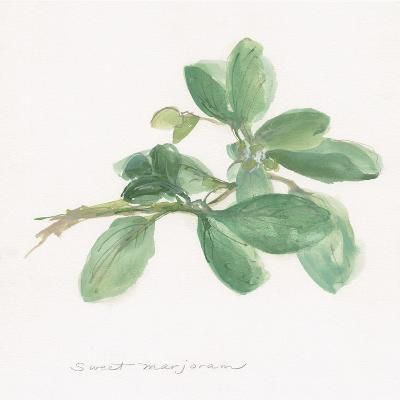 Sweet Marjoram-Chris Paschke-Art Print