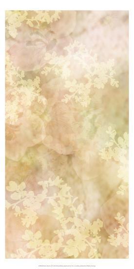 Sweet Mystery II-Prunis Dulcis-Art Print