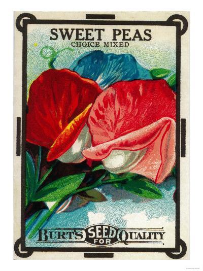 Sweet Peas Seed Packet-Lantern Press-Art Print
