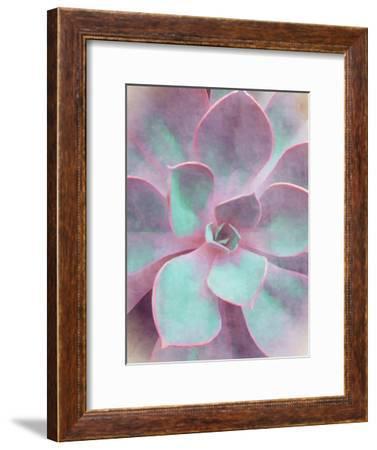 Sweet Succulent-Emanuela Carratoni-Framed Art Print
