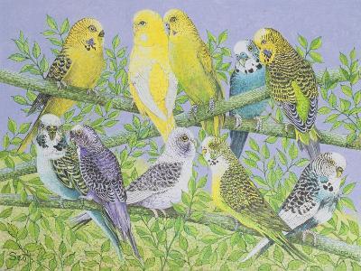 Sweet Talking-Pat Scott-Giclee Print