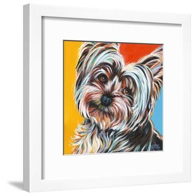 Sweet Yorkie II-Carolee Vitaletti-Framed Art Print