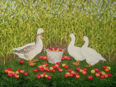 Sweetcorn-Geese-Ditz-Giclee Print
