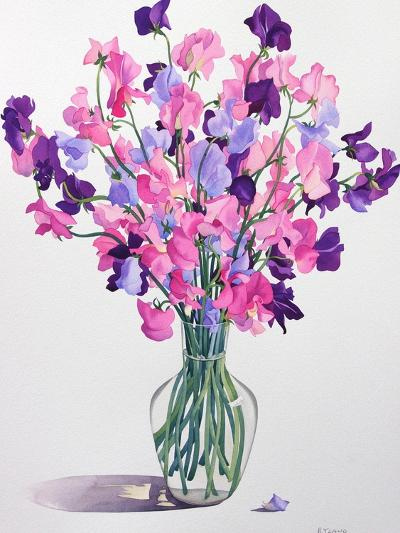 Sweetpeas, 2007-Christopher Ryland-Giclee Print