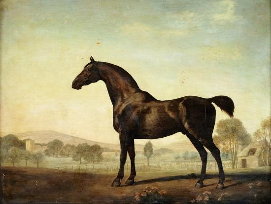 Sweetwilliam', a Bay Racehorse, in a Paddock-George Stubbs-Giclee Print
