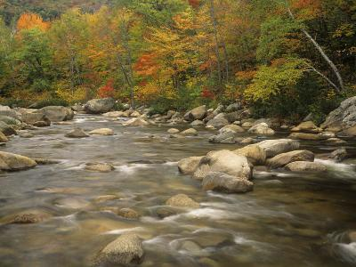 Swift River in Autumn, White Mountains National Forest, New Hampshire, USA-Adam Jones-Photographic Print