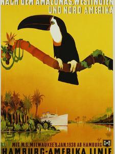 Hamburg-Amerika Linie Poster by Albert Fuss by swim ink 2 llc