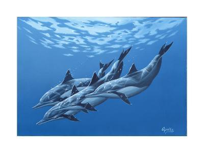 Swimming with the Dolphins-Apollo-Giclee Print