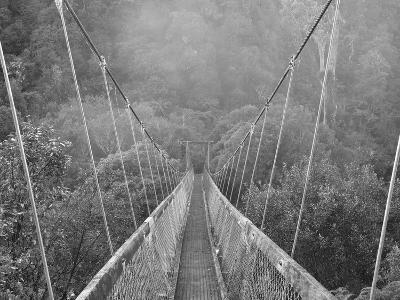 Swingbridge, Motu Falls, Motu, Gisborne, North Island, New Zealand, Pacific-Jochen Schlenker-Photographic Print