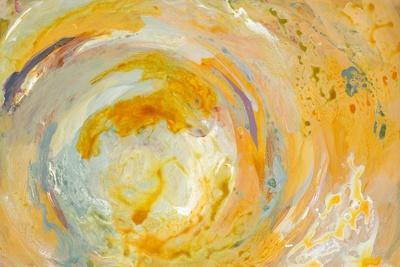 https://imgc.artprintimages.com/img/print/swirl-oasis_u-l-q1g146y0.jpg?p=0