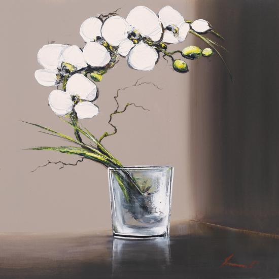 Swirls of White Orchids I-Olivier Tramoni-Art Print