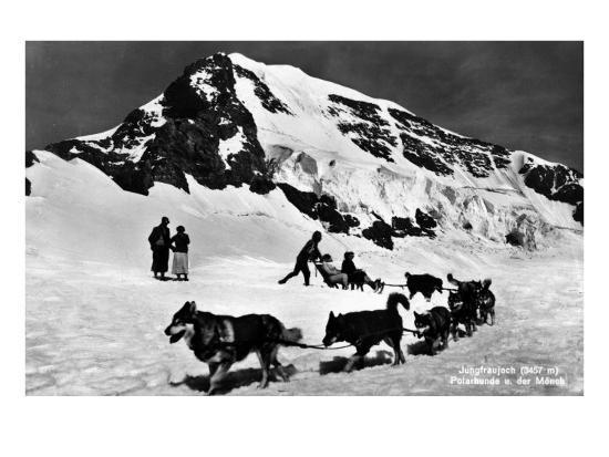 Switzerland - Dogsledding at Jungfraujoch-Lantern Press-Art Print