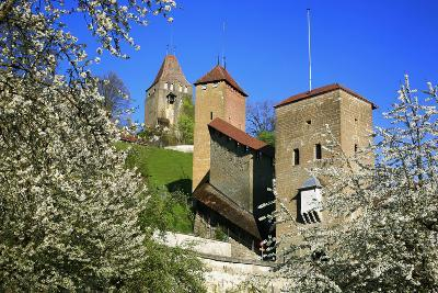 Switzerland, Spring in Fribourg on the Sarine River, Cats Tower and Berne Gate-Uwe Steffens-Photographic Print
