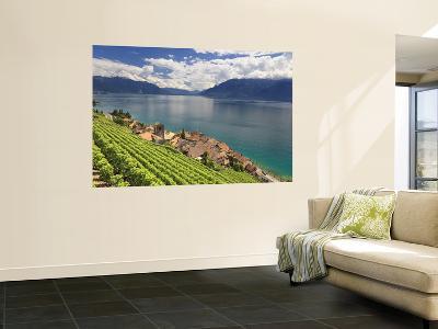 Switzerland, Vaud, Lavaux Vineyards, St; Saphorin Village and Lac Leman / Lake Geneva-Michele Falzone-Wall Mural