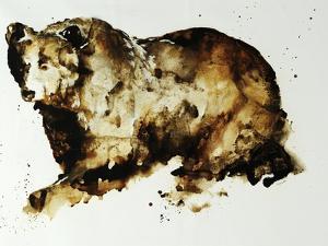 Brown Bear by Sydney Edmunds