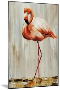 Flamingo IV by Sydney Edmunds