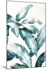 Palm Reader by Sydney Edmunds