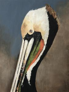 Pelican Bay by Sydney Edmunds